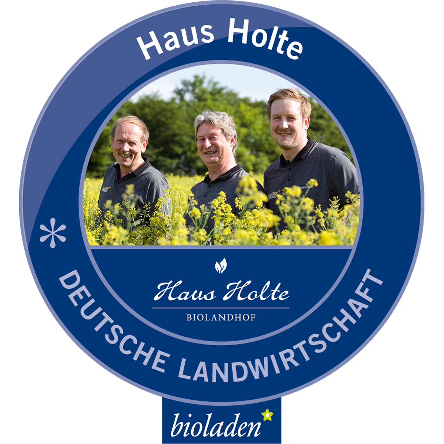 Haus Holte